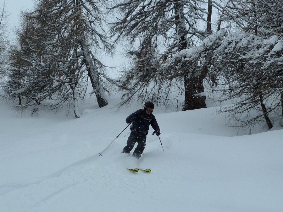 Tree Skiing on guided ski tour week
