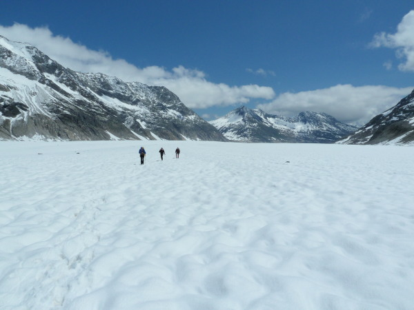 Vastness of the Aletsch glacier
