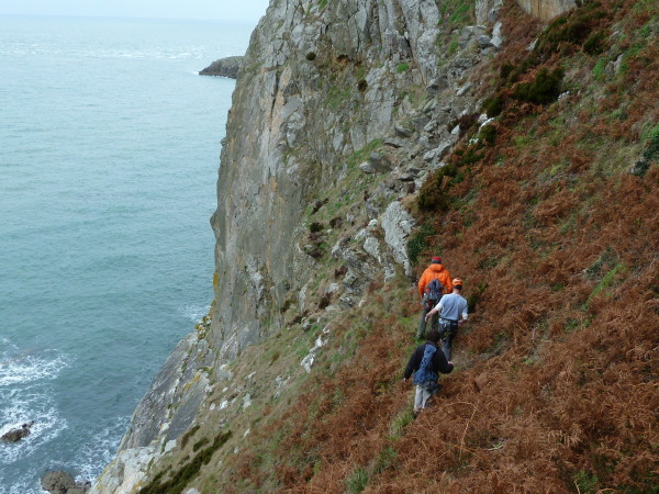 The team approaching Gogarth Main Cliff.